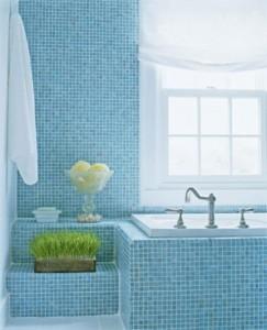 baie albastra